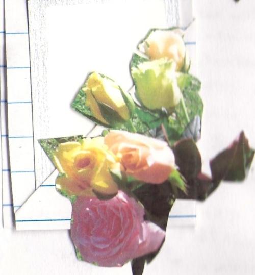 """Journal Flowers"""
